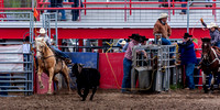 Dodge City Jr High Team Roping