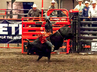 Bull Riding KHSRA State Finals Second Go 2017-2018
